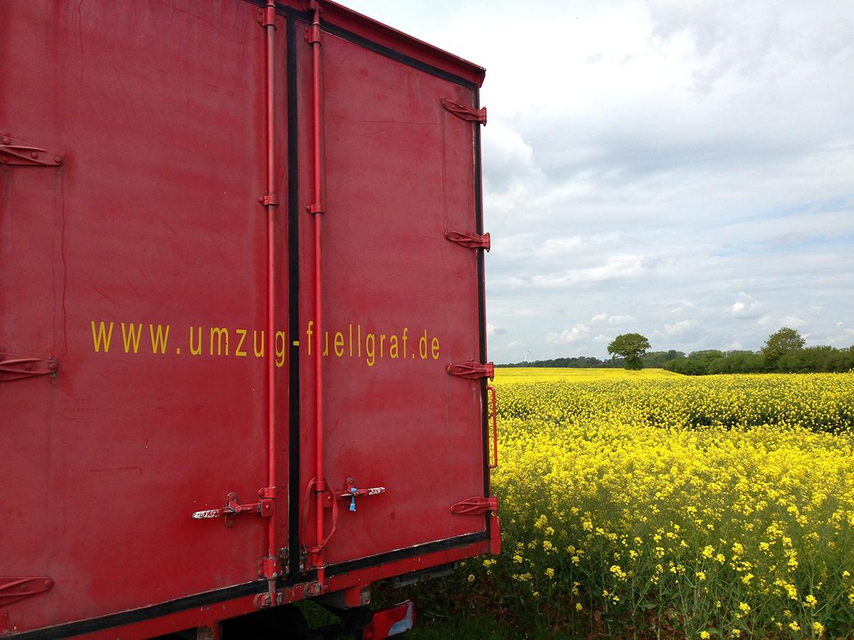 Rapsfeld Schleswig-Holstein Landschaft Raps Norddeutschland