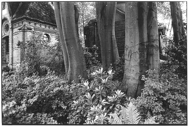 Fotografie Schwarzweiß Friedhof Kiel Südfriedhof Gruft Gräber