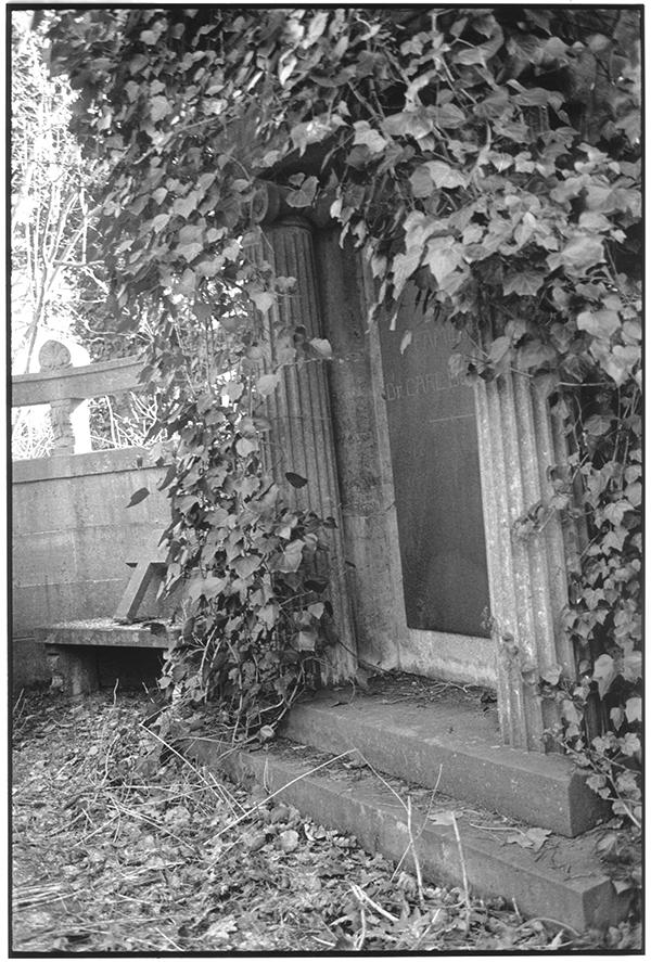 Fotografie Schwarzweiß Friedhof Kiel Eichhof Gruft Kreuz Efeu