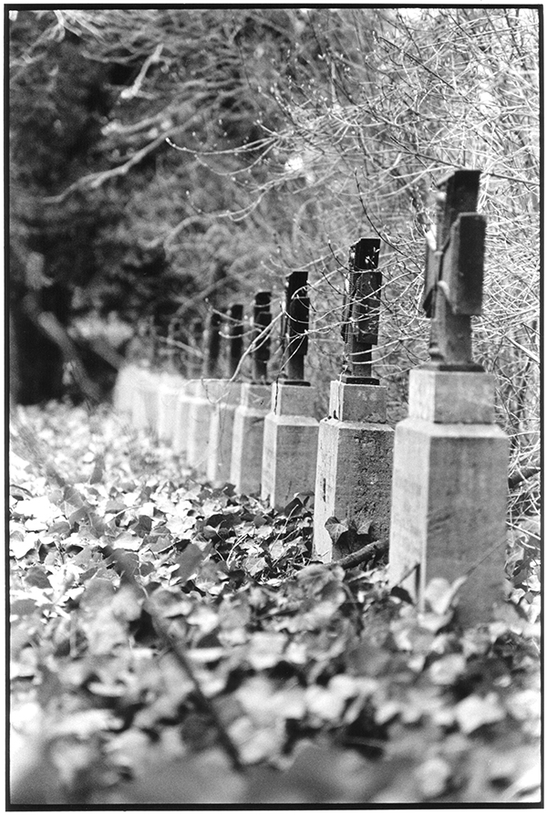 Fotografie Schwarzweiß Friedhof Braunschweig