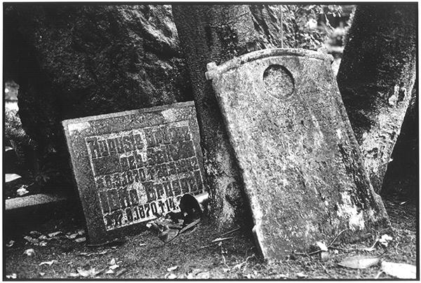 Fotografie Schwarzweiß Friedhof Kiel Südfriedhof Gruft Grab Grabplatten