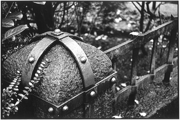 Fotografie Schwarzweiß Friedhof Kiel Südfriedhof Grab
